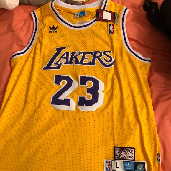 02c2b17b5 Lebron James Retro Los Angeles Lakers Jersey!